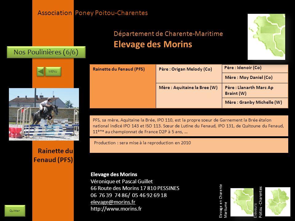 APPC Présidente Lynda JOURDAIN La Gravière 79400 AUGE 06 27 34 23 78 Association Poney Poitou-Charentes Nos Poulinières (6/6) Rainette du Fenaud (PFS)