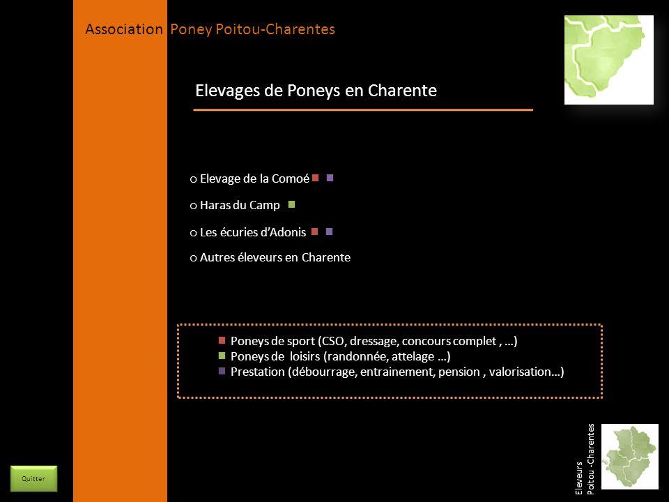 APPC Présidente Lynda JOURDAIN La Gravière 79400 AUGE 06 27 34 23 78 Association Poney Poitou-Charentes Elevages de Poneys en Charente o Elevage de la