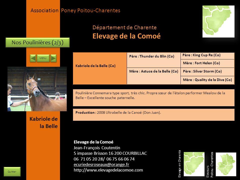 APPC Présidente Lynda JOURDAIN La Gravière 79400 AUGE 06 27 34 23 78 Association Poney Poitou-Charentes Nos Poulinières (2/3) Kabriole de la Belle (Co
