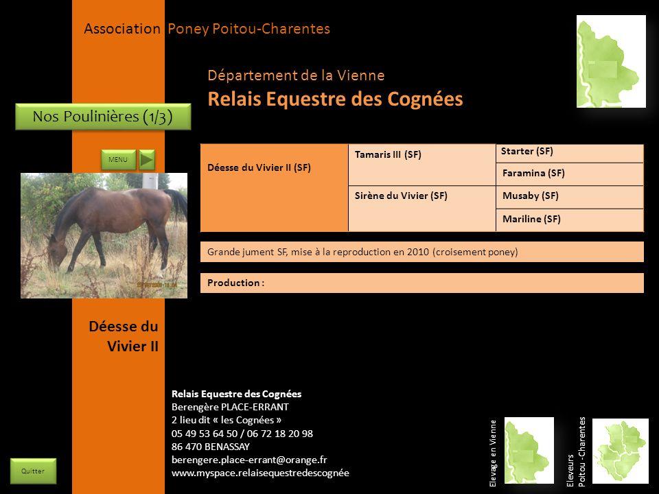 APPC Présidente Lynda JOURDAIN La Gravière 79400 AUGE 06 27 34 23 78 Association Poney Poitou-Charentes Nos Poulinières (1/3) Déesse du Vivier II (SF)