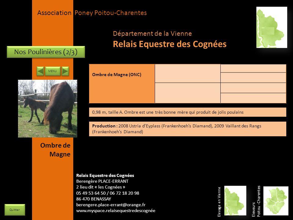 APPC Présidente Lynda JOURDAIN La Gravière 79400 AUGE 06 27 34 23 78 Association Poney Poitou-Charentes Nos Poulinières (2/3) Ombre de Magne (ONC) 0,9