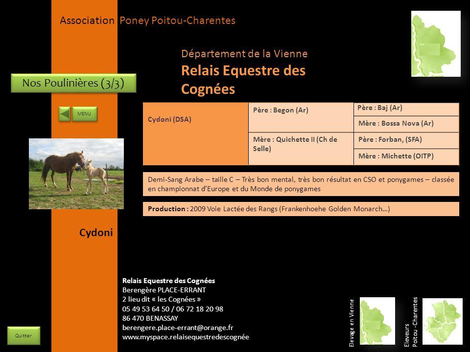 APPC Présidente Lynda JOURDAIN La Gravière 79400 AUGE 06 27 34 23 78 Association Poney Poitou-Charentes Nos Poulinières (3/3) Cydoni (DSA) Père : Bego