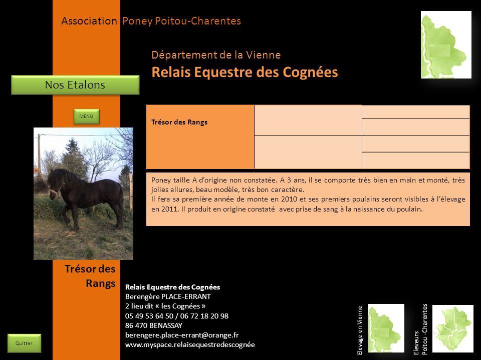 APPC Présidente Lynda JOURDAIN La Gravière 79400 AUGE 06 27 34 23 78 Association Poney Poitou-Charentes Nos Etalons Trésor des Rangs Poney taille A do