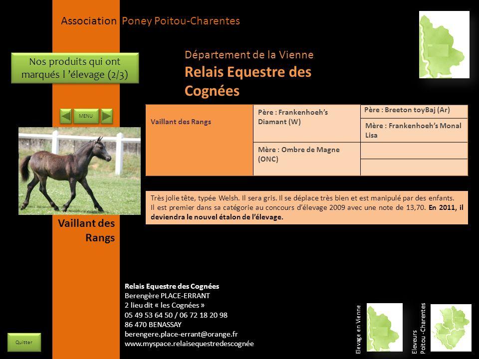 APPC Présidente Lynda JOURDAIN La Gravière 79400 AUGE 06 27 34 23 78 Association Poney Poitou-Charentes Elevage en Vienne Eleveurs Poitou -Charentes Q