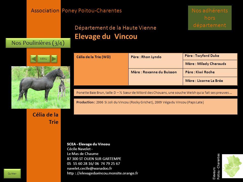 APPC Présidente Lynda JOURDAIN La Gravière 79400 AUGE 06 27 34 23 78 Association Poney Poitou-Charentes Nos Poulinières (3/4) Célia de la Trie (WD)Pèr