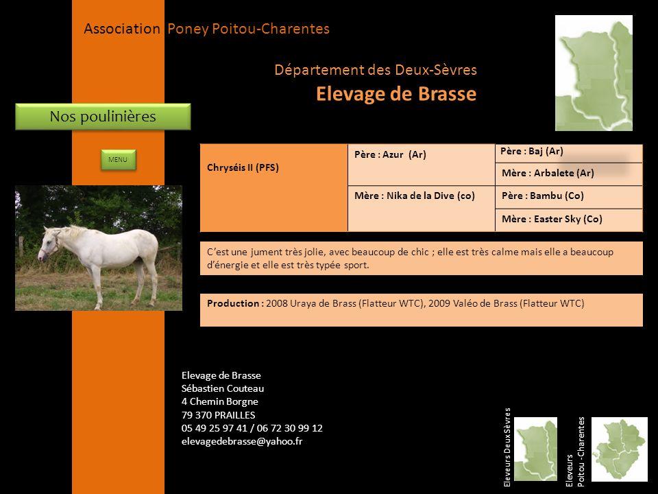 APPC Présidente Lynda JOURDAIN La Gravière 79400 AUGE 06 27 34 23 78 Association Poney Poitou-Charentes Nos poulinières Chryséis II (PFS) Père : Azur