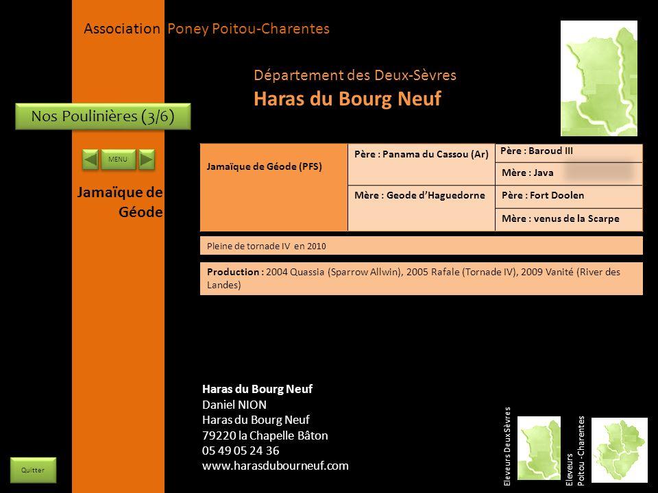 APPC Présidente Lynda JOURDAIN La Gravière 79400 AUGE 06 27 34 23 78 Association Poney Poitou-Charentes Nos Poulinières (3/6) Jamaïque de Géode (PFS)