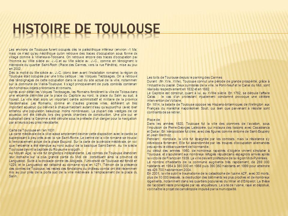 Les environs de Toulouse furent occupés dès le paléolithique inférieur (environ -1 Ma) mais ce n est qu au néolithique qu on retrouve des traces d occupation sous forme de village comme à Villeneuve-Tolosane.