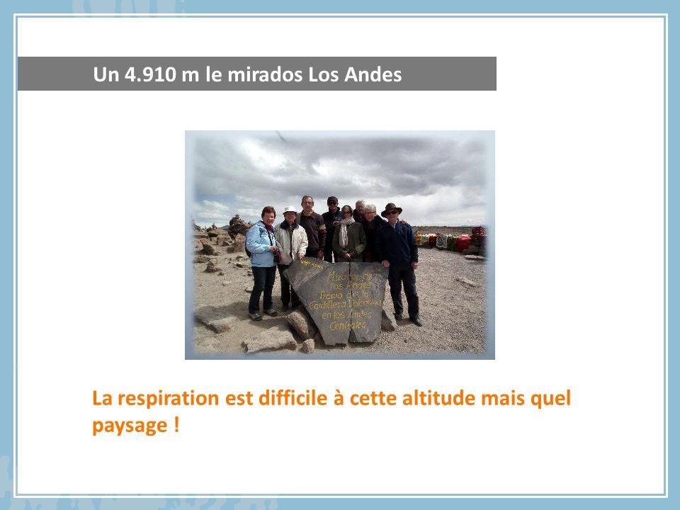 La respiration est difficile à cette altitude mais quel paysage ! Un 4.910 m le mirados Los Andes