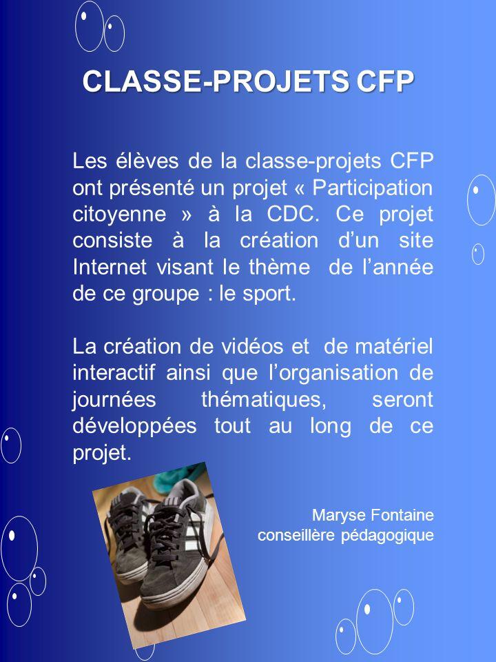Les élèves de la classe-projets CFP ont présenté un projet « Participation citoyenne » à la CDC. Ce projet consiste à la création dun site Internet vi