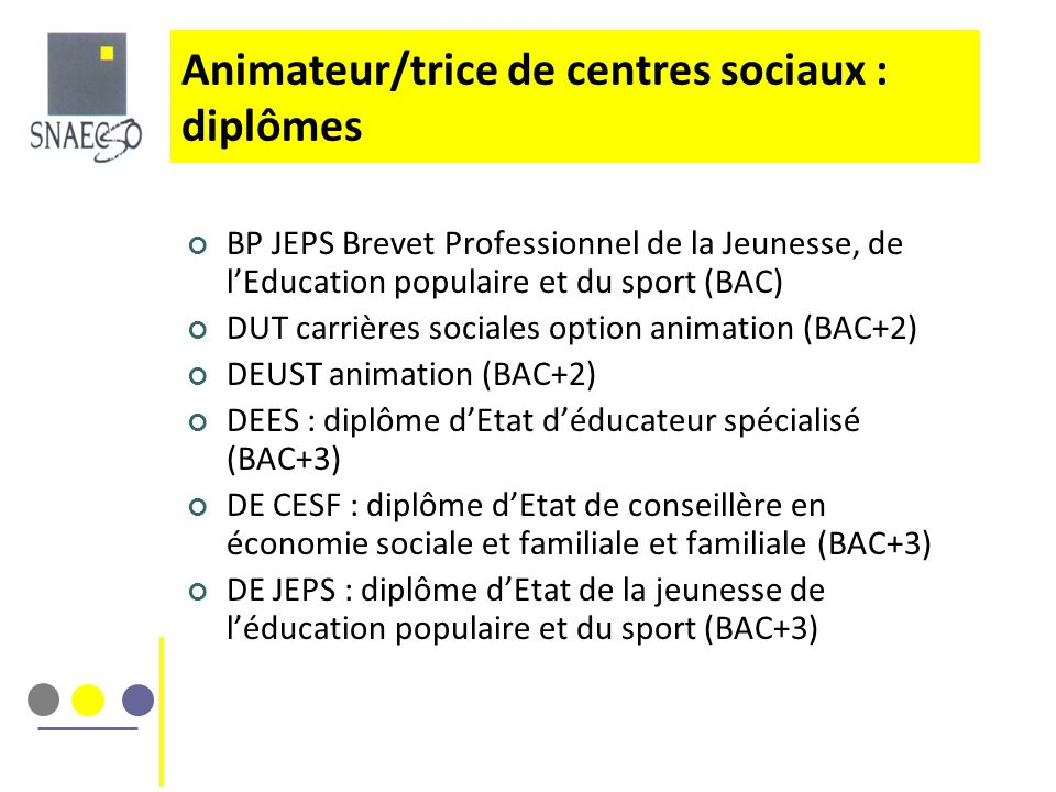 BP JEPS Brevet Professionnel de la Jeunesse, de lEducation populaire et du sport (BAC) DUT carrières sociales option animation (BAC+2) DEUST animation