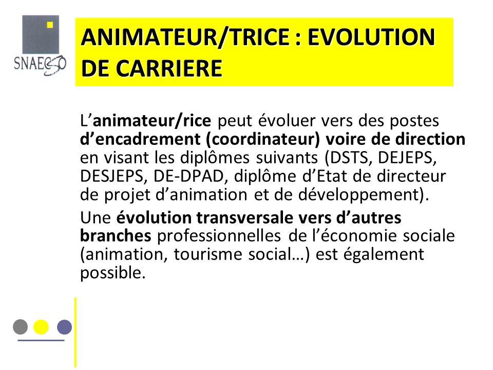ANIMATEUR/TRICE : EVOLUTION DE CARRIERE Lanimateur/rice peut évoluer vers des postes dencadrement (coordinateur) voire de direction en visant les dipl