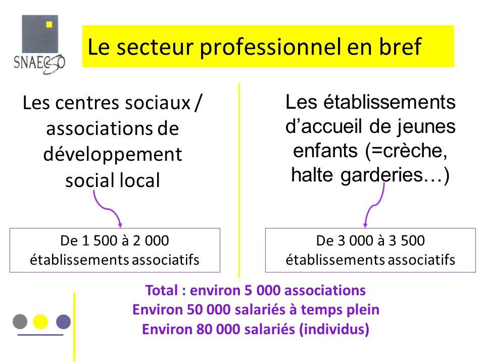Le secteur professionnel en bref Les centres sociaux / associations de développement social local De 1 500 à 2 000 établissements associatifs Les étab