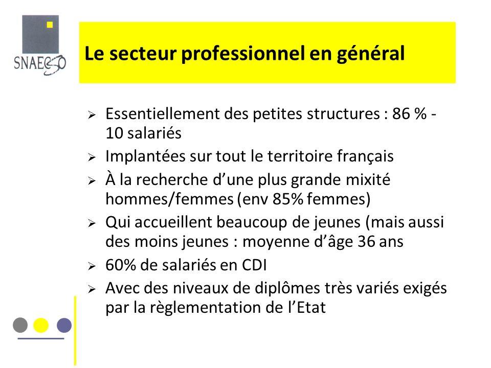 Essentiellement des petites structures : 86 % - 10 salariés Implantées sur tout le territoire français À la recherche dune plus grande mixité hommes/f