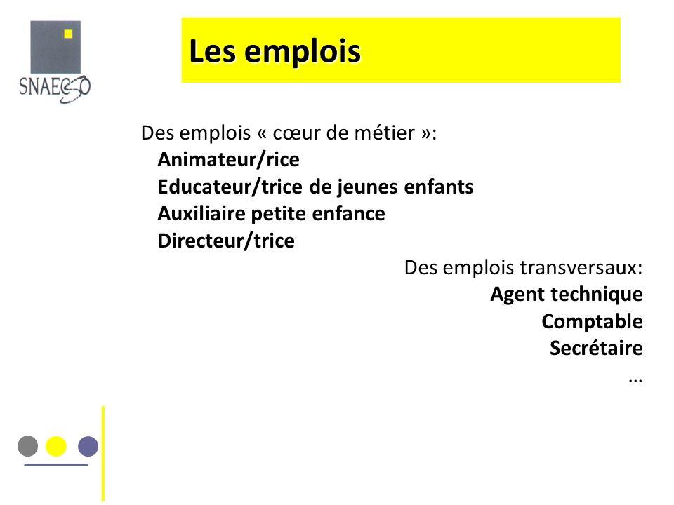 Des emplois « cœur de métier »: Animateur/rice Educateur/trice de jeunes enfants Auxiliaire petite enfance Directeur/trice Des emplois transversaux: A
