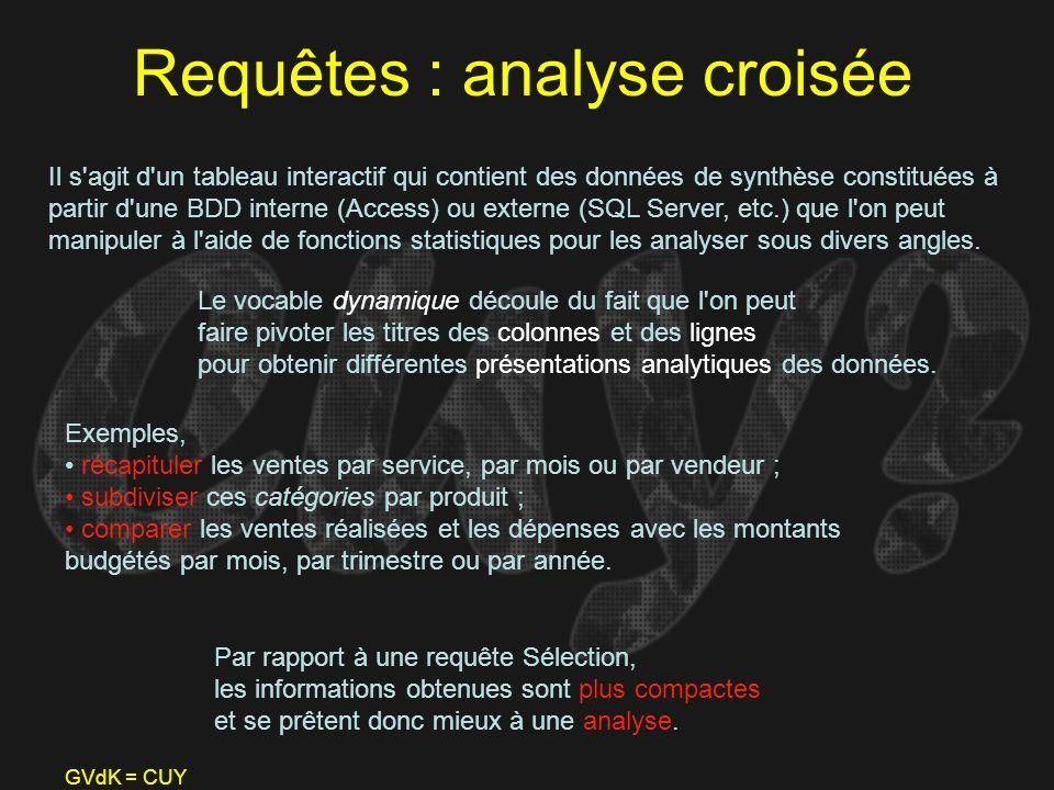 GVdK = CUY Requêtes : analyse croisée Il s'agit d'un tableau interactif qui contient des données de synthèse constituées à partir d'une BDD interne (A