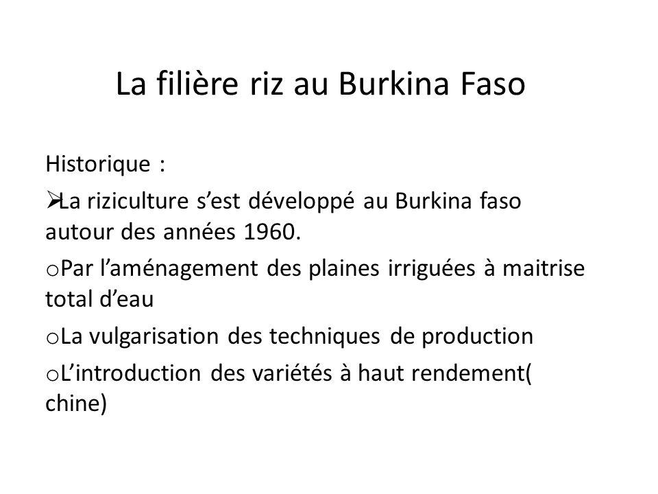 La filière riz au Burkina Faso Historique : La riziculture sest développé au Burkina faso autour des années 1960. o Par laménagement des plaines irrig