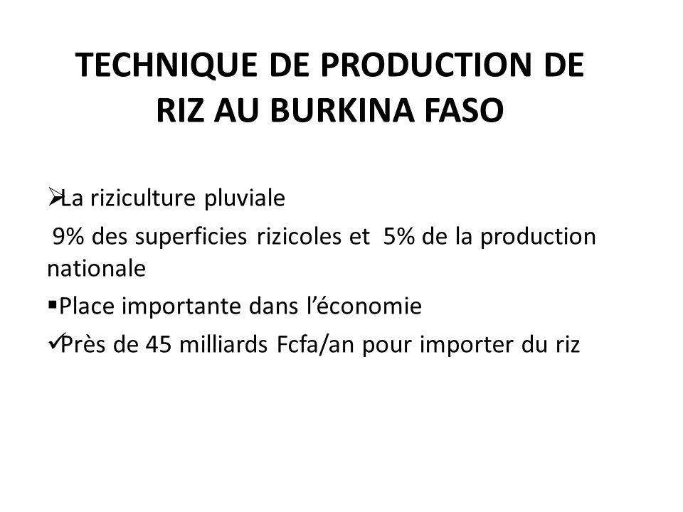 TECHNIQUE DE PRODUCTION DE RIZ AU BURKINA FASO La riziculture pluviale 9% des superficies rizicoles et 5% de la production nationale Place importante