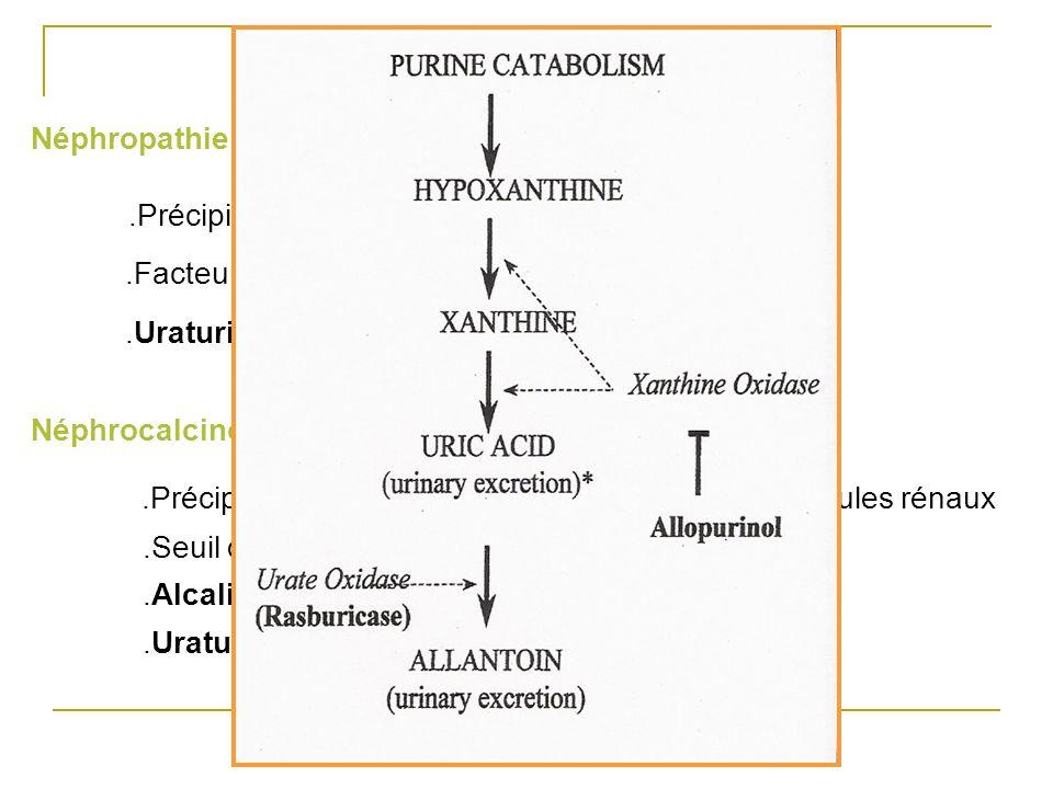 Néphropathie uratique.Précipitation intra tubulaire de cristaux durate.Facteurs aggravants : oligurie et acidité urinaire.Uraturie/Créatininurie >1 (D