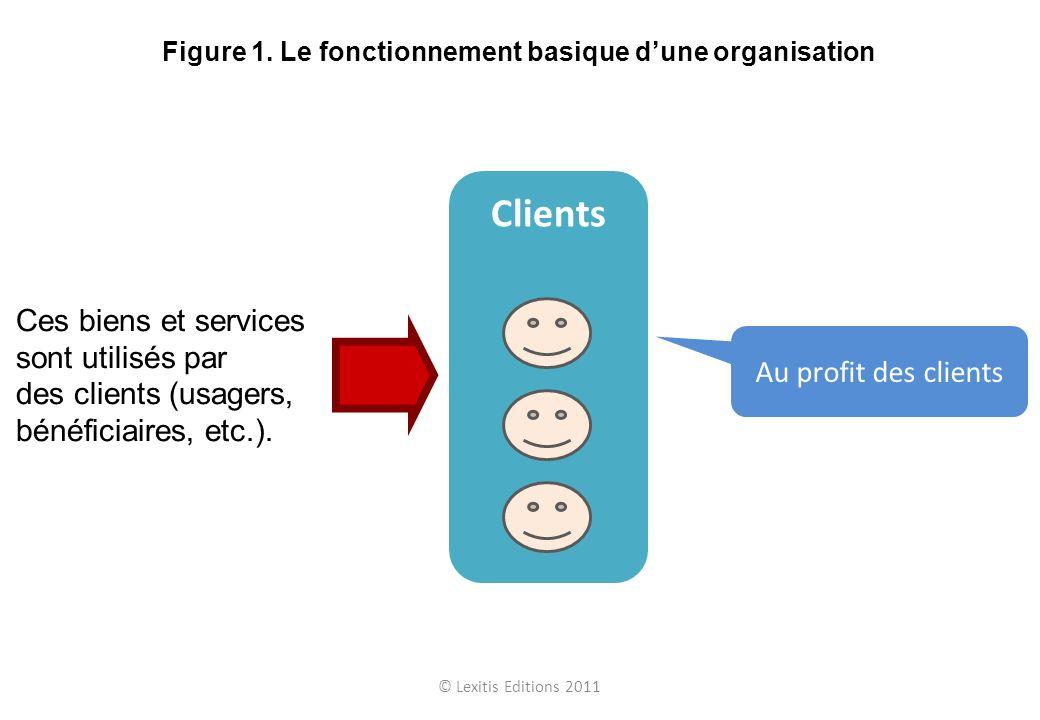 Ces biens et services sont utilisés par des clients (usagers, bénéficiaires, etc.). Clients Au profit des clients © Lexitis Editions 2011 Figure 1. Le