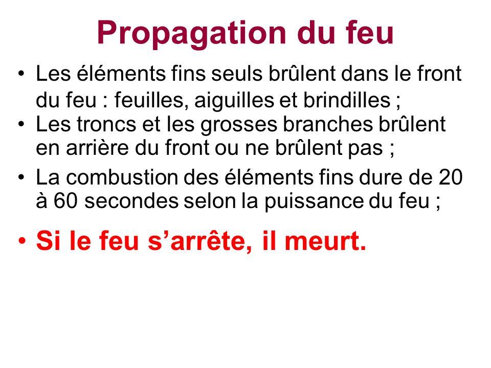 Propagation du feu La combustion des éléments fins dure de 20 à 60 secondes selon la puissance du feu ; Les troncs et les grosses branches brûlent en
