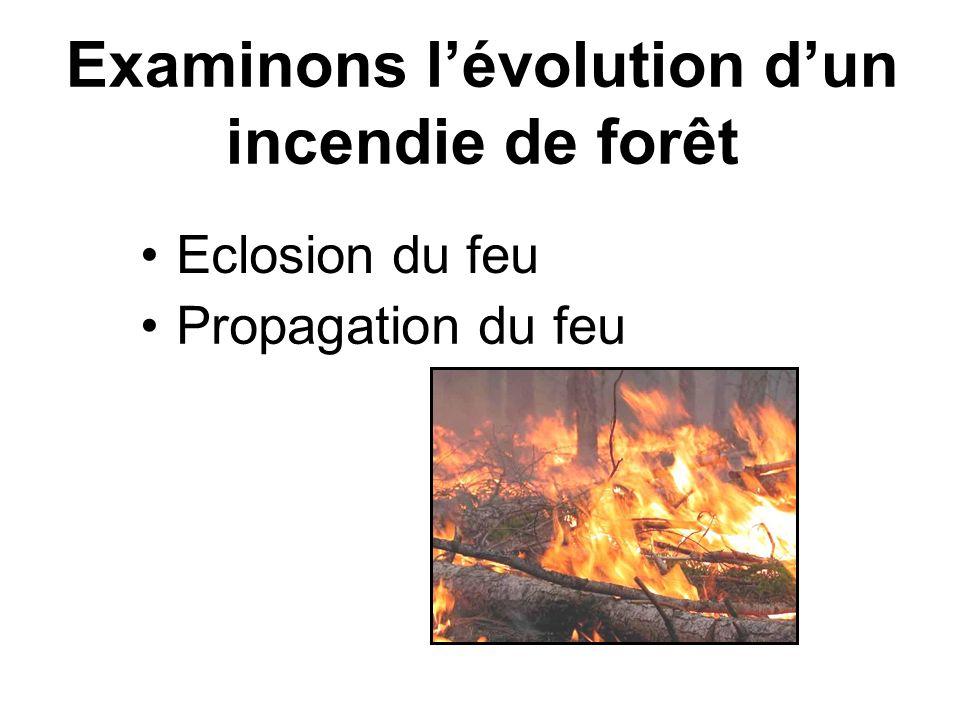 Eclosion du feu Examinons lévolution dun incendie de forêt