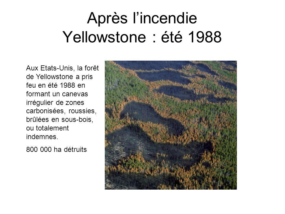 Gironde 20/08/1949 30000 ha brûlés ; 82 morts ; 125 immeubles détruits