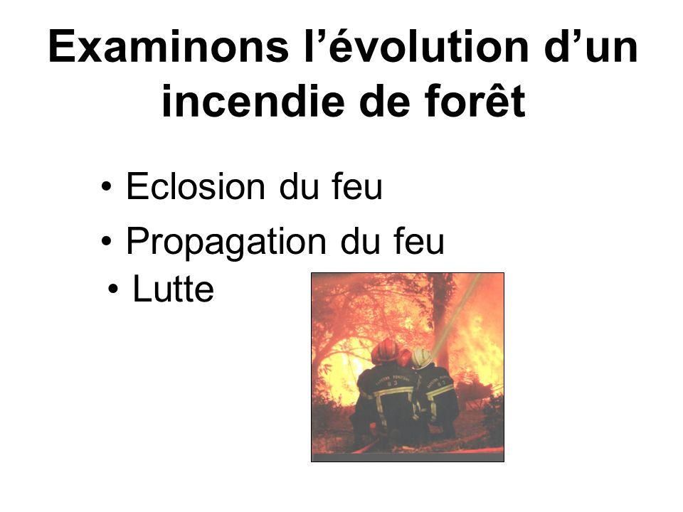 Eclosion du feu Examinons lévolution dun incendie de forêt Propagation du feu