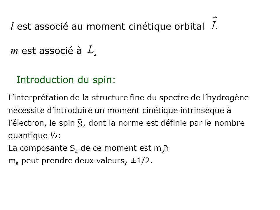 l est associé au moment cinétique orbital m est associé à Introduction du spin: Linterprétation de la structure fine du spectre de lhydrogène nécessit