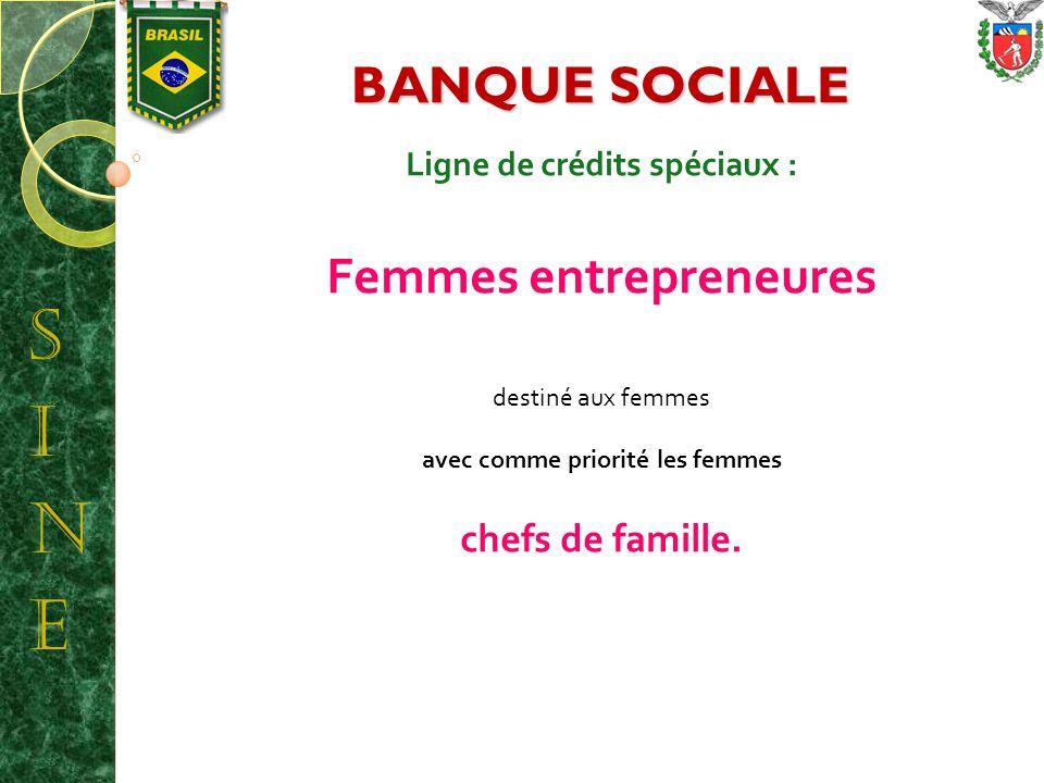 ESTADO DO PARANÁ SECRETARIA DE ESTADO DO TRABALHO, EMPREGO E PROMOÇÃO SOCIAL Ligne de crédits spéciaux : Femmes entrepreneures destiné aux femmes avec comme priorité les femmes chefs de famille.