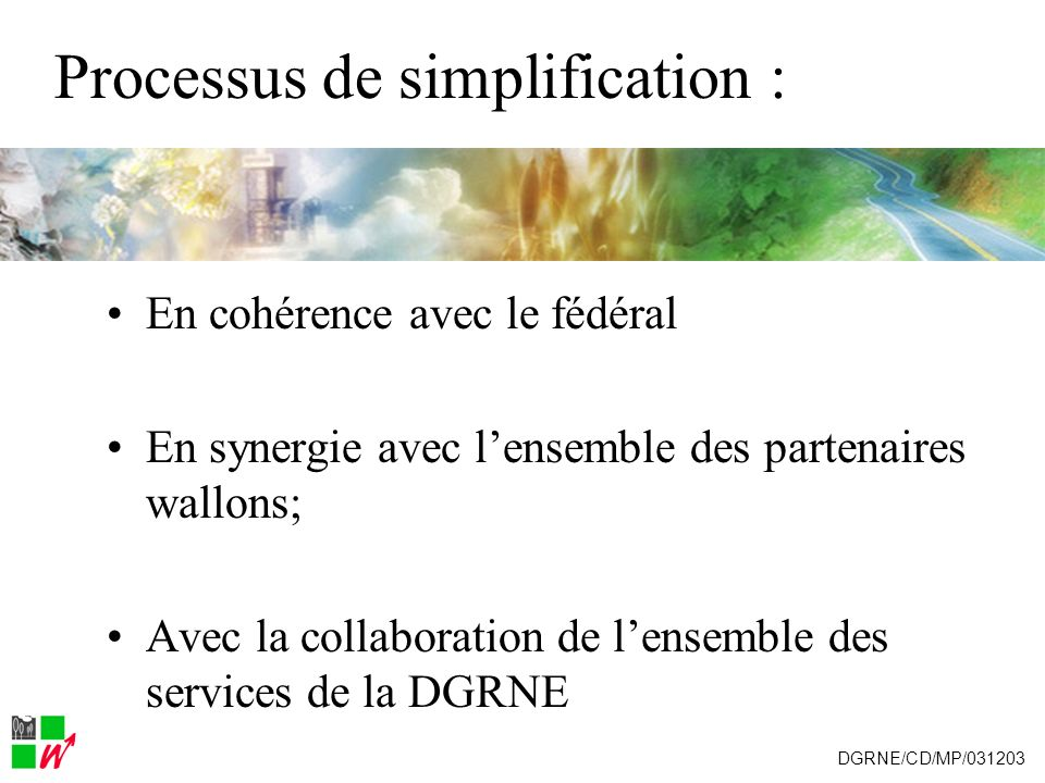 Calendrier des travaux Janvier 2004 : envoi des formulaires (papier + excell) janvier 2005 : questionnement on-line DGRNE/CD/MP/031203