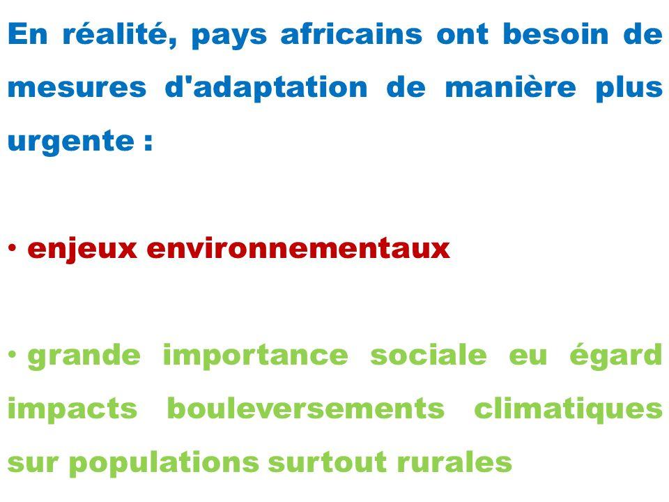 En réalité, pays africains ont besoin de mesures d adaptation de manière plus urgente : enjeux environnementaux grande importance sociale eu égard impacts bouleversements climatiques sur populations surtout rurales