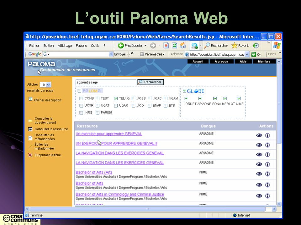 Loutil Paloma Web