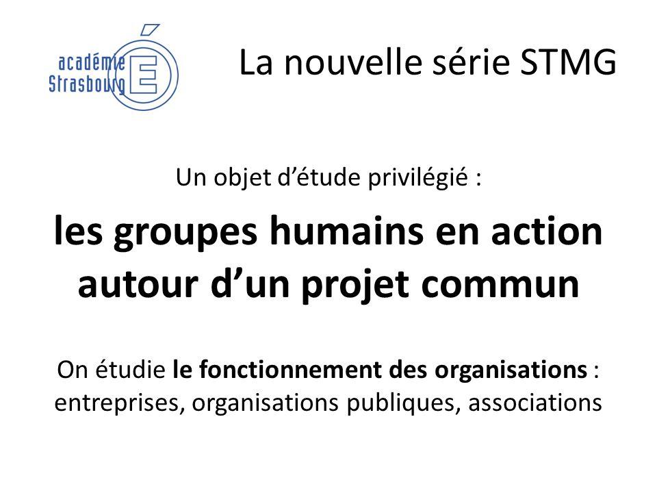 La nouvelle série STMG Un objet détude privilégié : les groupes humains en action autour dun projet commun On étudie le fonctionnement des organisatio