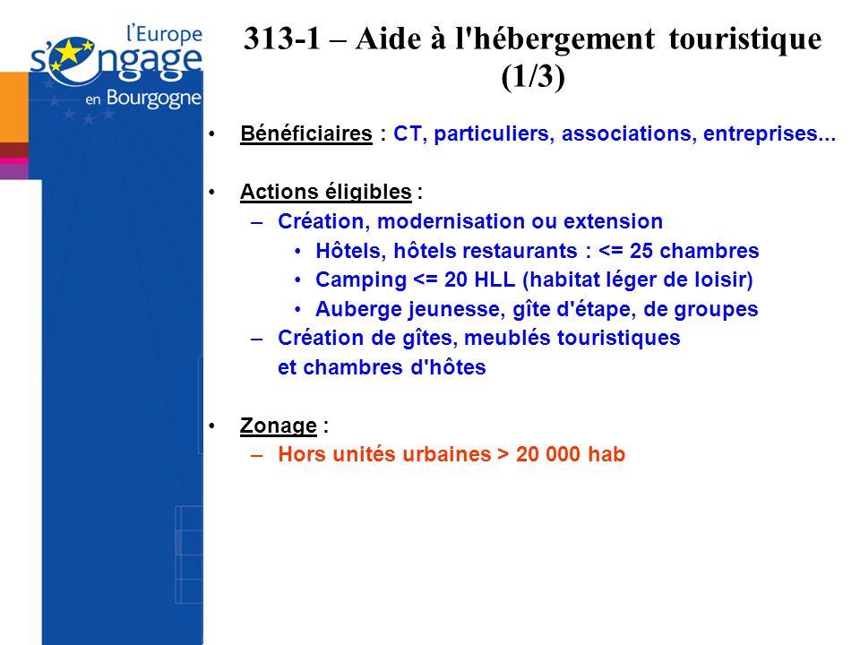 313-1 – Aide à l'hébergement touristique (1/3) Bénéficiaires : CT, particuliers, associations, entreprises... Actions éligibles : –Création, modernisa