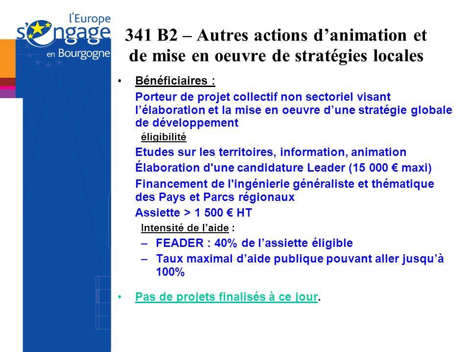 341 B2 – Autres actions danimation et de mise en oeuvre de stratégies locales Bénéficiaires : Porteur de projet collectif non sectoriel visant lélabor