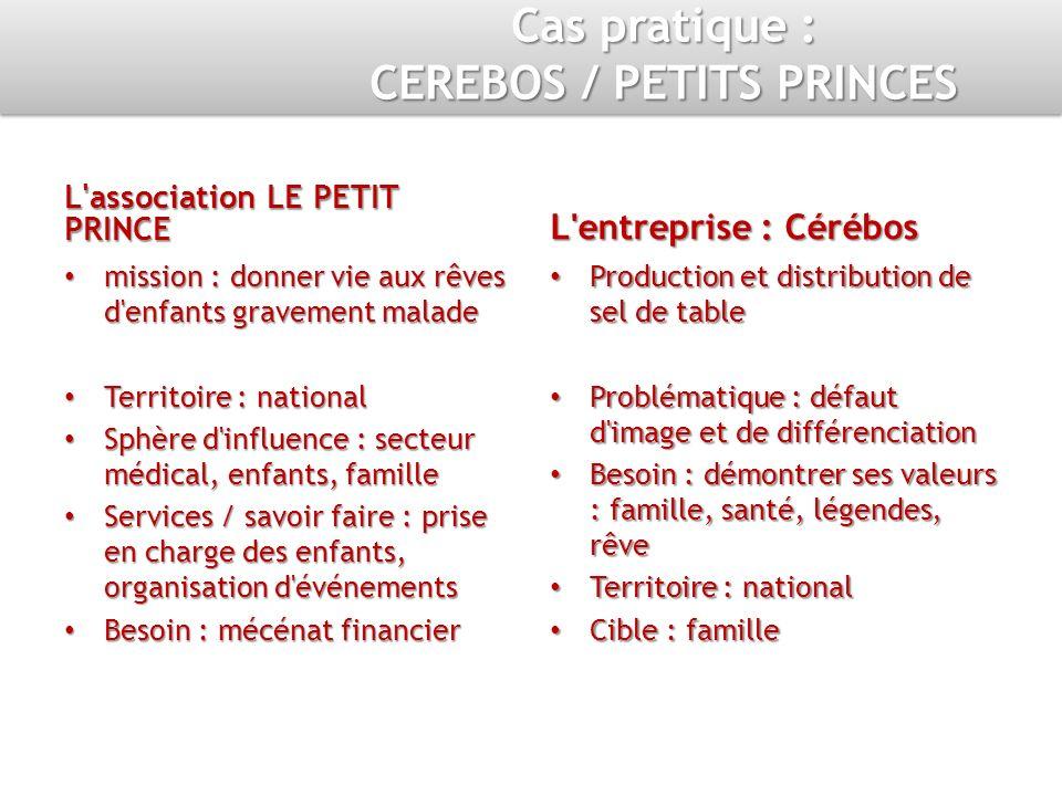 L'association LE PETIT PRINCE mission : donner vie aux rêves d'enfants gravement malade Territoire : national Sphère d'influence : secteur médical, en