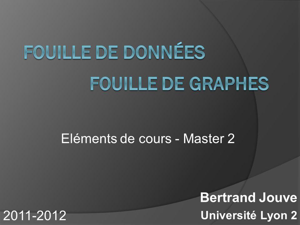 Bertrand Jouve Université Lyon 2 Eléments de cours - Master 2 2011-2012