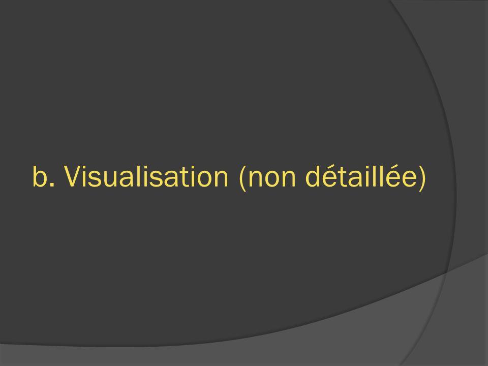 b. Visualisation (non détaillée)