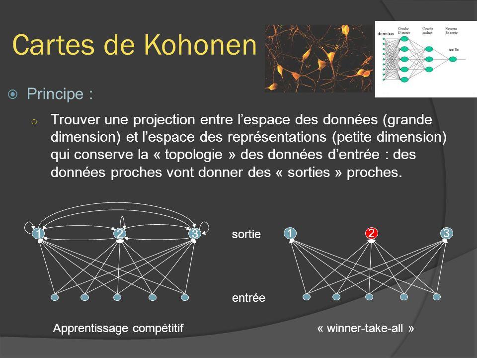 Cartes de Kohonen Principe : o Trouver une projection entre lespace des données (grande dimension) et lespace des représentations (petite dimension) qui conserve la « topologie » des données dentrée : des données proches vont donner des « sorties » proches.