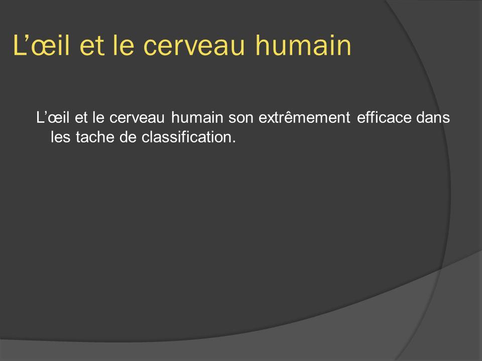 Lœil et le cerveau humain Lœil et le cerveau humain son extrêmement efficace dans les tache de classification.