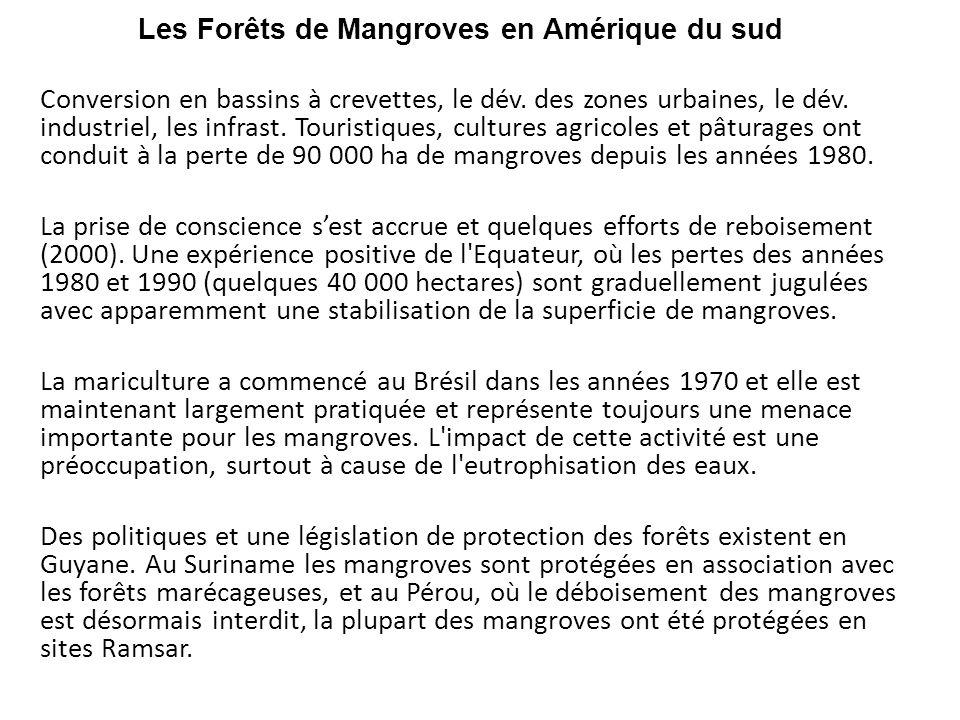 Les Forêts de Mangroves en Amérique du sud Conversion en bassins à crevettes, le dév. des zones urbaines, le dév. industriel, les infrast. Touristique