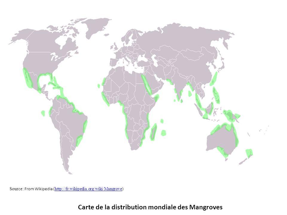Carte de la distribution mondiale des Mangroves Source: From Wikipedia (http://fr.wikipedia.org/wiki/Mangrove)http://fr.wikipedia.org/wiki/Mangrove