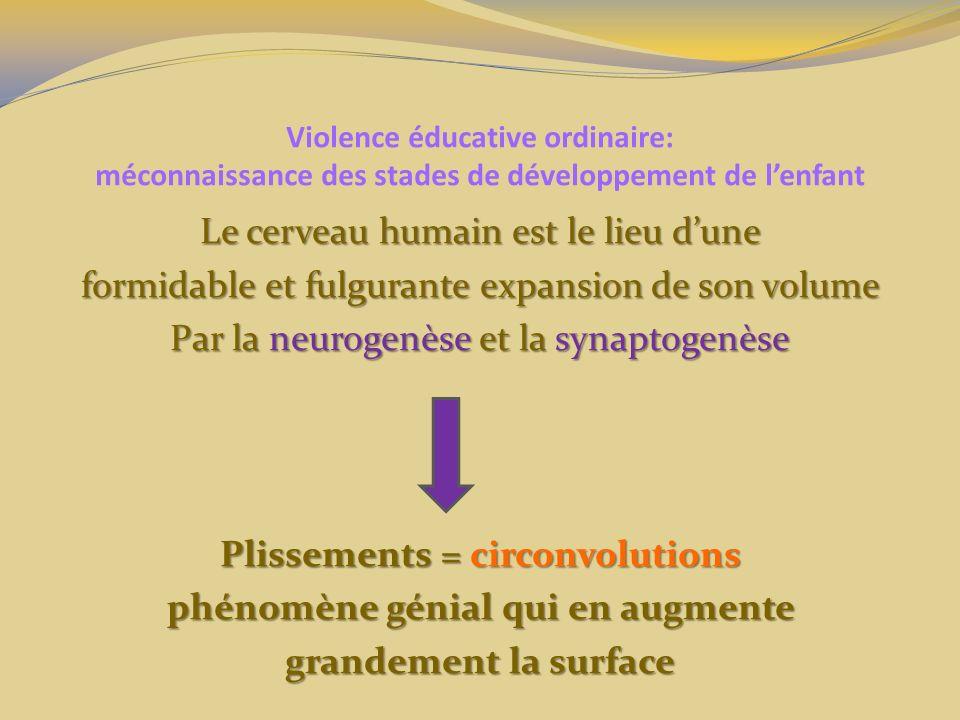 Violence éducative ordinaire: méconnaissance des stades de développement de lenfant Le cerveau humain est le lieu dune formidable et fulgurante expans