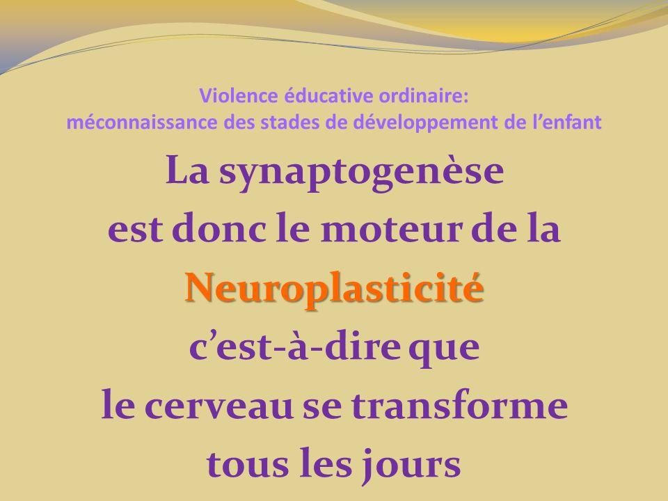 Violence éducative ordinaire: méconnaissance des stades de développement de lenfant La synaptogenèse est donc le moteur de laNeuroplasticité cest-à-dire que le cerveau se transforme tous les jours
