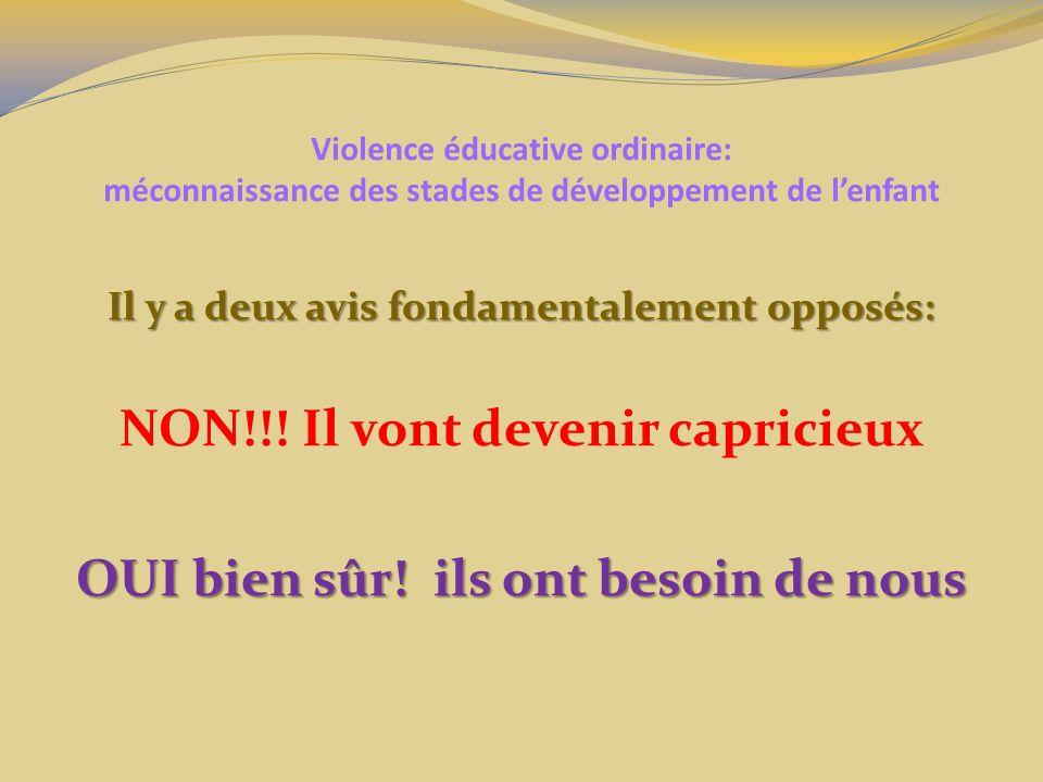 Violence éducative ordinaire: méconnaissance des stades de développement de lenfant Il y a deux avis fondamentalement opposés: NON!!! Il vont devenir