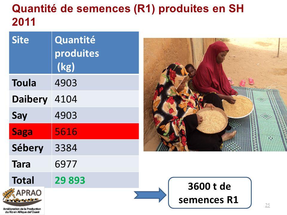 Quantité de semences (R1) produites en SH 2011 SiteQuantité produites (kg) Toula4903 Daibery4104 Say4903 Saga5616 Sébery3384 Tara6977 Total29 893 25 3