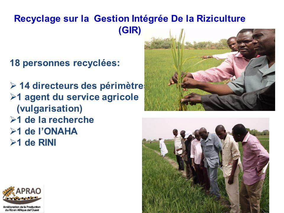 Recyclage sur la Gestion Intégrée De la Riziculture (GIR) 18 personnes recyclées: 14 directeurs des périmètres, 1 agent du service agricole (vulgarisa