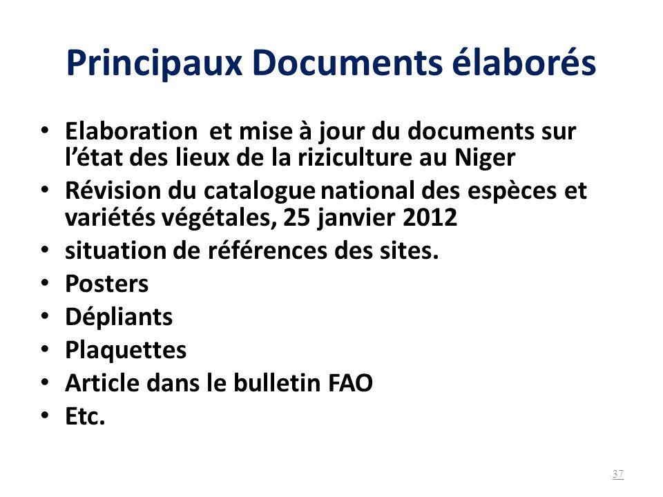 Principaux Documents élaborés Elaboration et mise à jour du documents sur létat des lieux de la riziculture au Niger Révision du catalogue national de