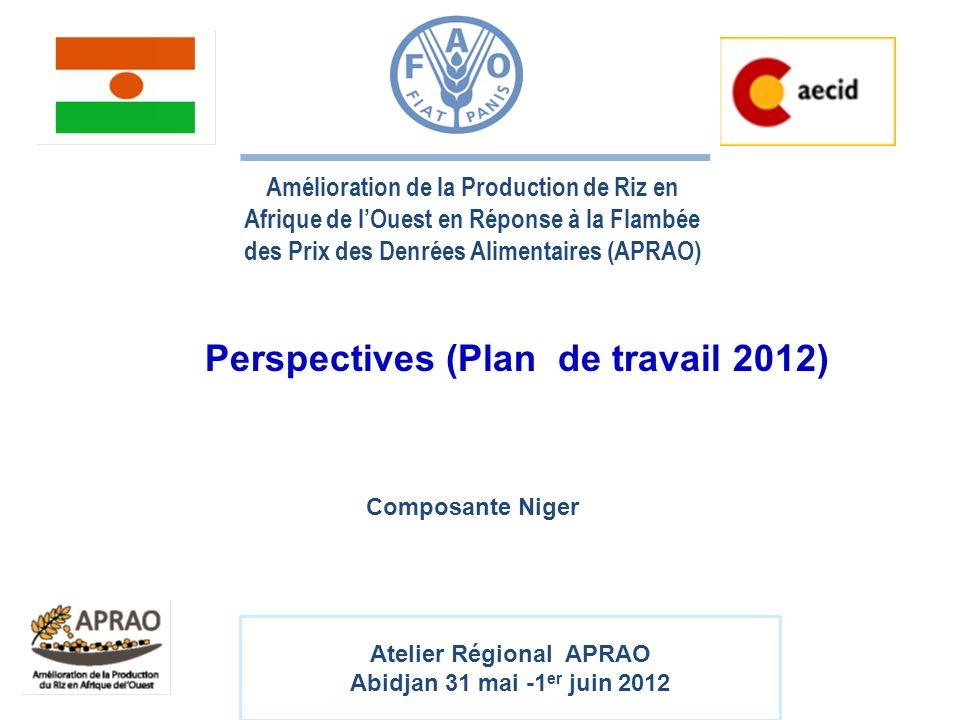 Amélioration de la Production de Riz en Afrique de lOuest en Réponse à la Flambée des Prix des Denrées Alimentaires (APRAO) Perspectives (Plan de trav